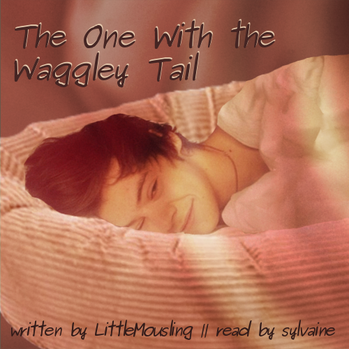 cover of The One with the Waggley Tail