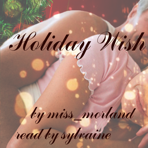 cover of Holiday Wish