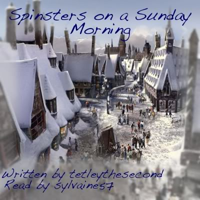 cover of spinsters on a sunday morning by snottygrrl