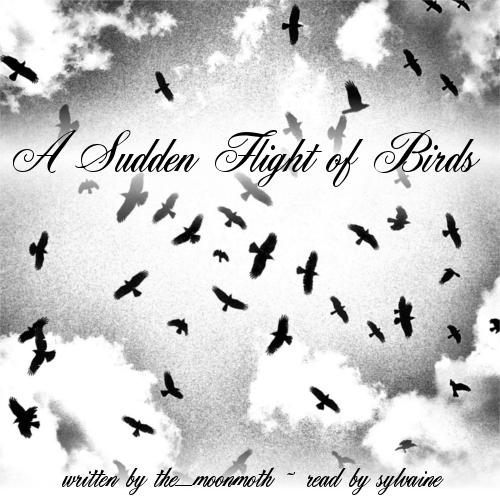 cover of A Sudden Flight of Birds