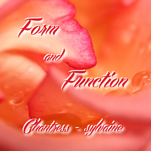 cover of form and function.